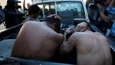 Photo of Detienen a varios pandilleros por homicidio y amenazas en colonias de Mejicanos