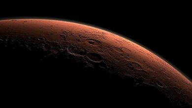 Photo of NASA lanza nuevo róver en busca de vida en Marte