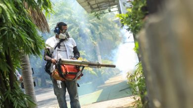 Photo of Gobierno lanza jornada nacional de prevención y control del Dengue