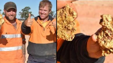 Photo of Buscadores de tesoros encuentra dos pepitas de oro de un tamaño «nunca visto»