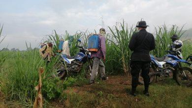 Photo of PNC incrementa patrullajes terrestres en áreas urbanas y rurales en zona norte de San Salvador