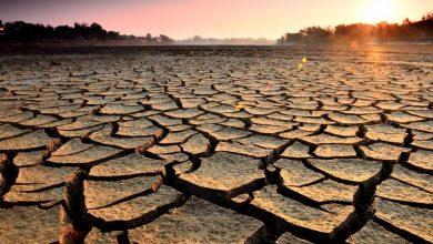 Photo of Olas de calor podrían matar amillones de personasen todo el planeta, según estudio