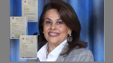 Photo of Magistrada suplente del TSE es socia de Adolfo Salume en empresas offshore de Panamá