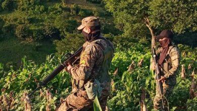 Photo of Presidente Bukele: el FMLN trabaja para el narcotráfico al criticar presencia de la Fuerza Armada en puntos ciegos fronterizos